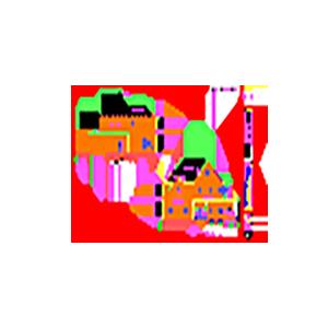 SRD Icon 4